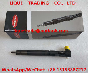 China DELPHI Common rail injector EMBR00301D , R00301D, 6710170121 A6710170121 SSANGYONG Korando injector supplier