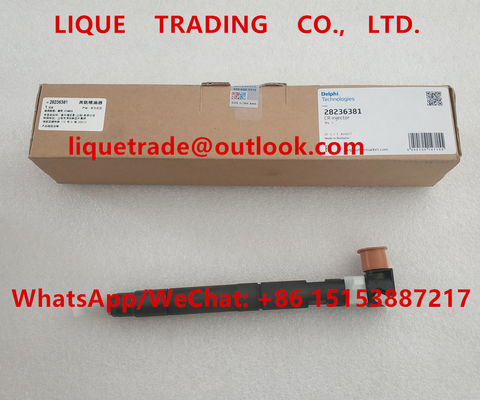 China DELPHI Common rail injector 28236381 for HYUNDAI Starex 33800-4A700 / 338004A700 supplier