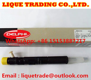 China DELPHI Genuine and New Common rail injector EJBR06101D for YUCHAI 2.5 4F FB3001112100011 factory