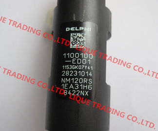 China DELPHI 28231014 / 1100100-ED01 common rail injector 28231014 for Great Wall Hover H6 1100100-ED01 factory